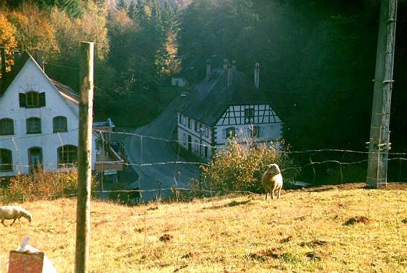Weitwanderweg Odenwald Vogesen 14 Tag